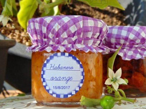Crema  piccante di habanero orange