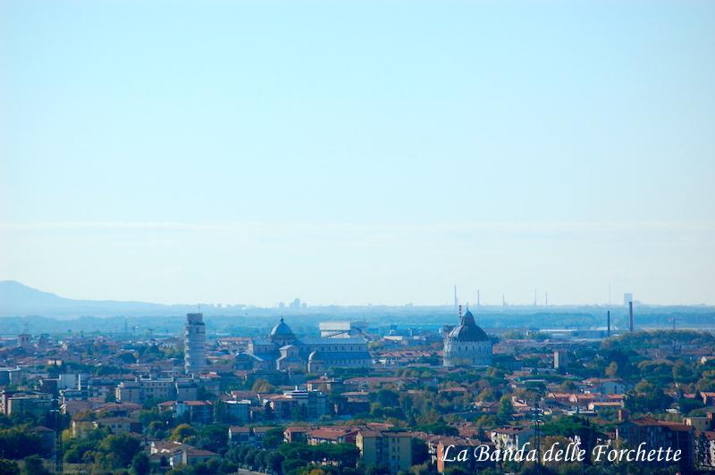 Avioturismo Italia Toscana PPiazza dei Miracoli Pisa