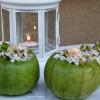 Zucchine ripiene riso, ricetta facile estiva