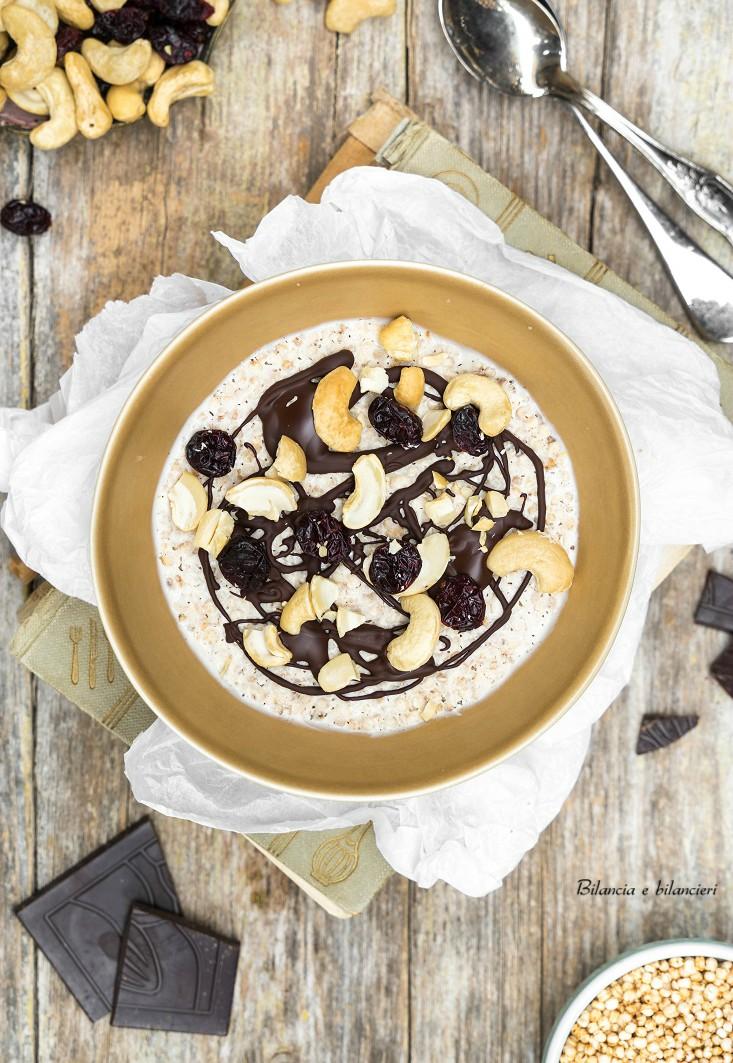 Quinoa Soffiata allo Yogurt con Cioccolato Anacardi e Mirtilli