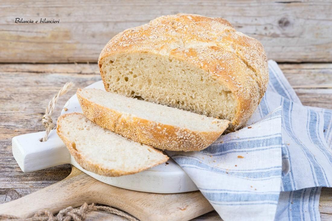 Pane senza impasto o no knead bread