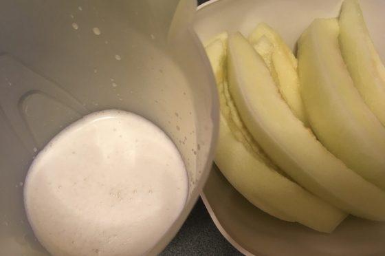 Latte di Melone (estratto dai semi)