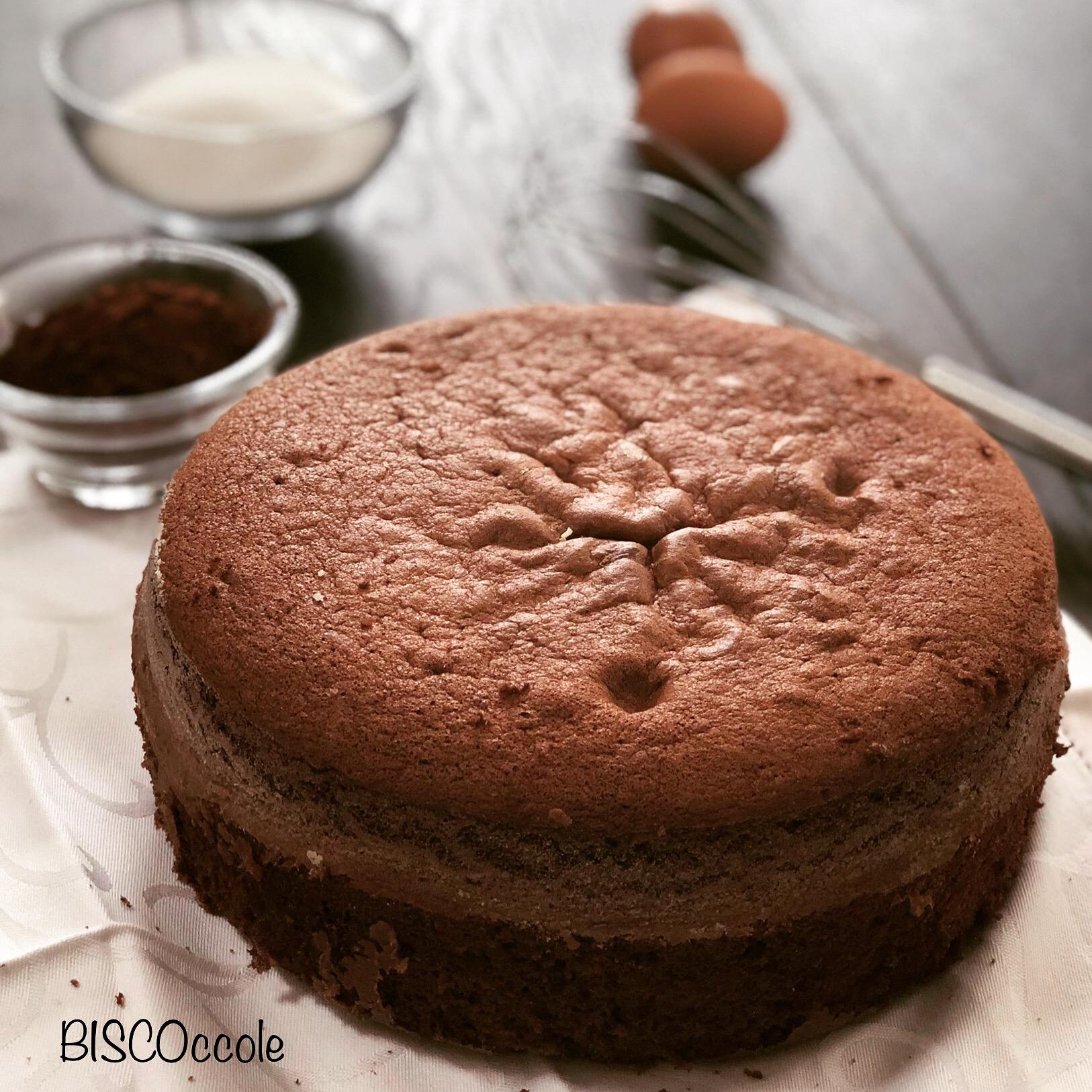 Ricetta Pan Di Spagna Al Cioccolato Bimby.Pan Di Spagna Al Cacao Ricetta Con E Senza Bimby Biscoccole Dintorni