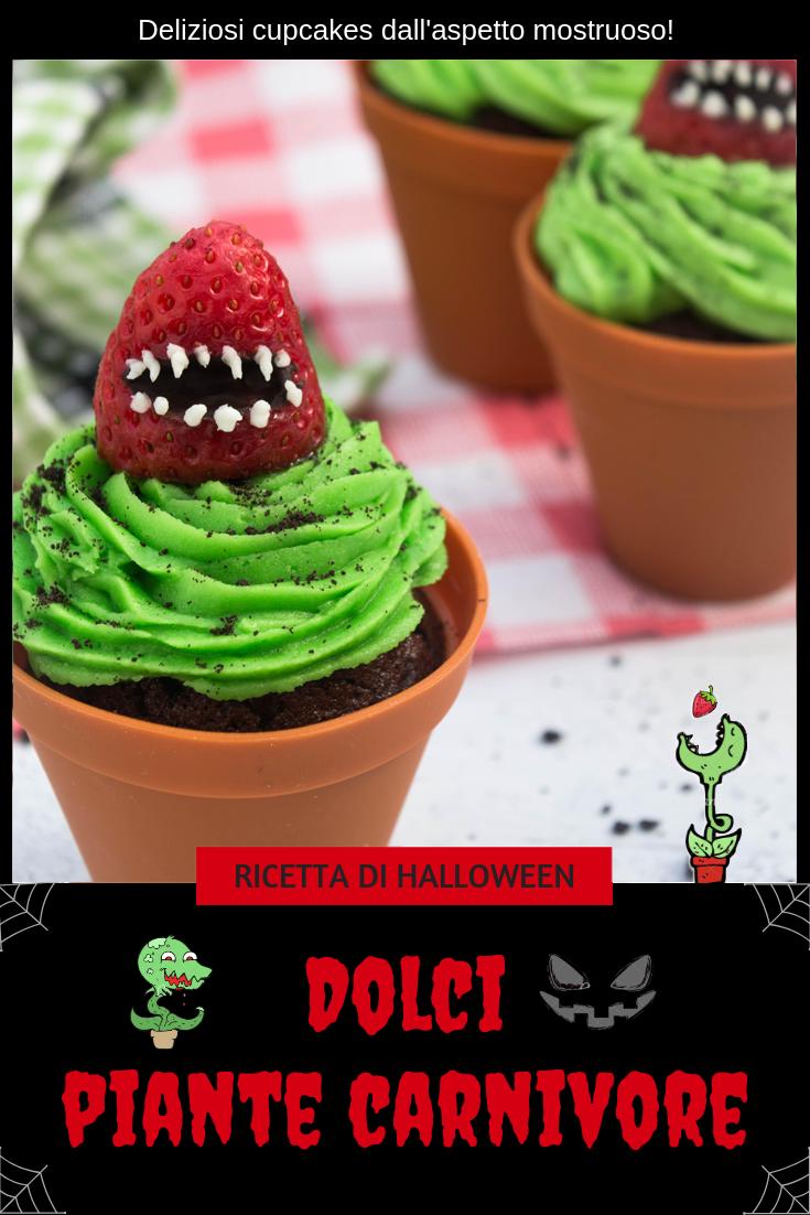 dolci piante carnivore