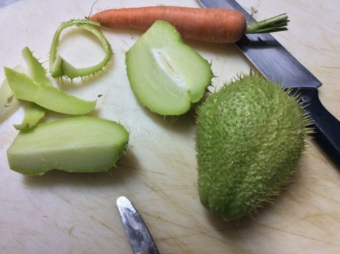 Minestra di zucchine spinose