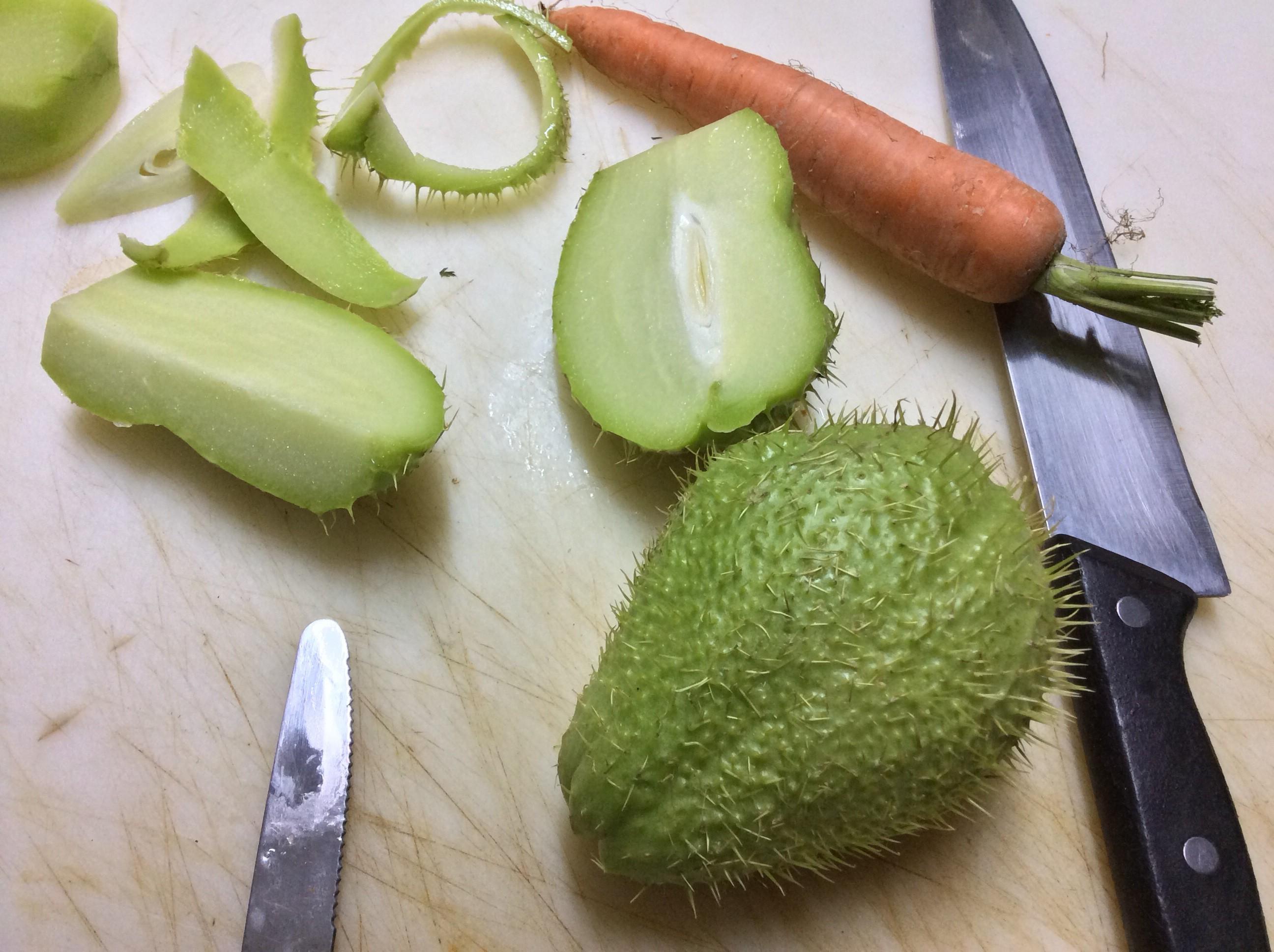 Minestra di zucchina spinosa o centenaria