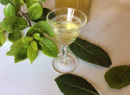 Liquore di alloro o laurino ricetta di famiglia