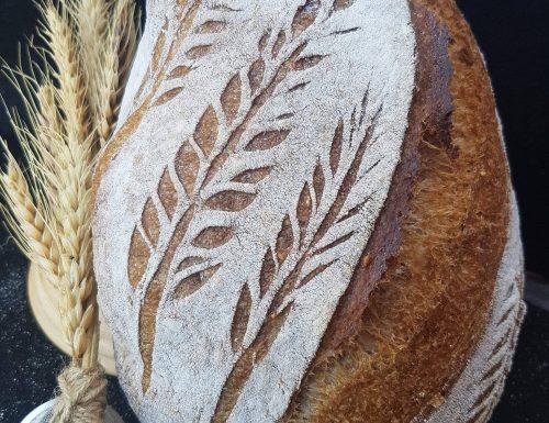 Pane con farina di segale e pane con farina di farro  lievito madre
