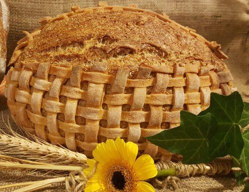 Pane con intreccio, lievito madre