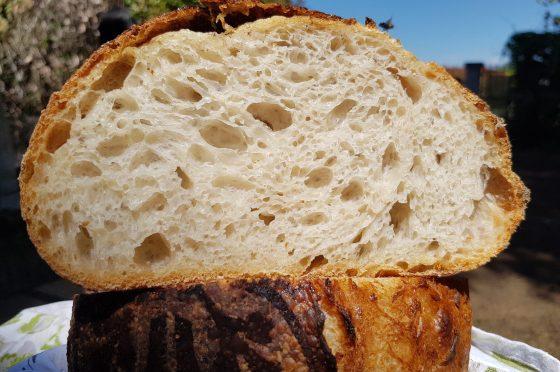 Pane con licoli di kefir
