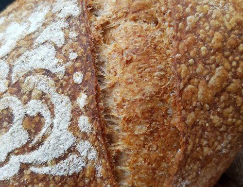 Pane  con farina integrale e tipo 2 con licoli