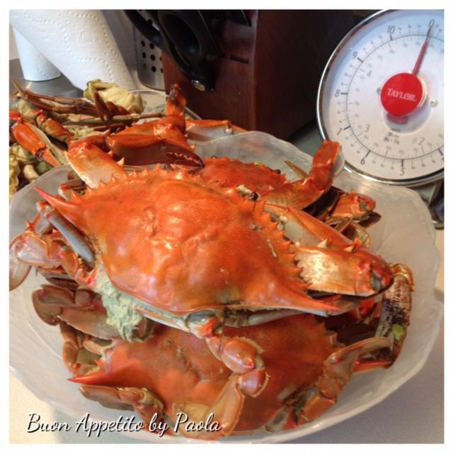 Granchi Blu Blu Crab Del Mariland