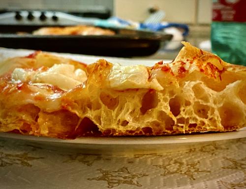 Pizza in teglia romana IN PLANETARIA facilissima AD ALTA IDRATAZIONE