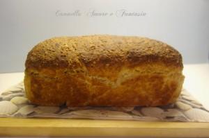 pane di segale 3