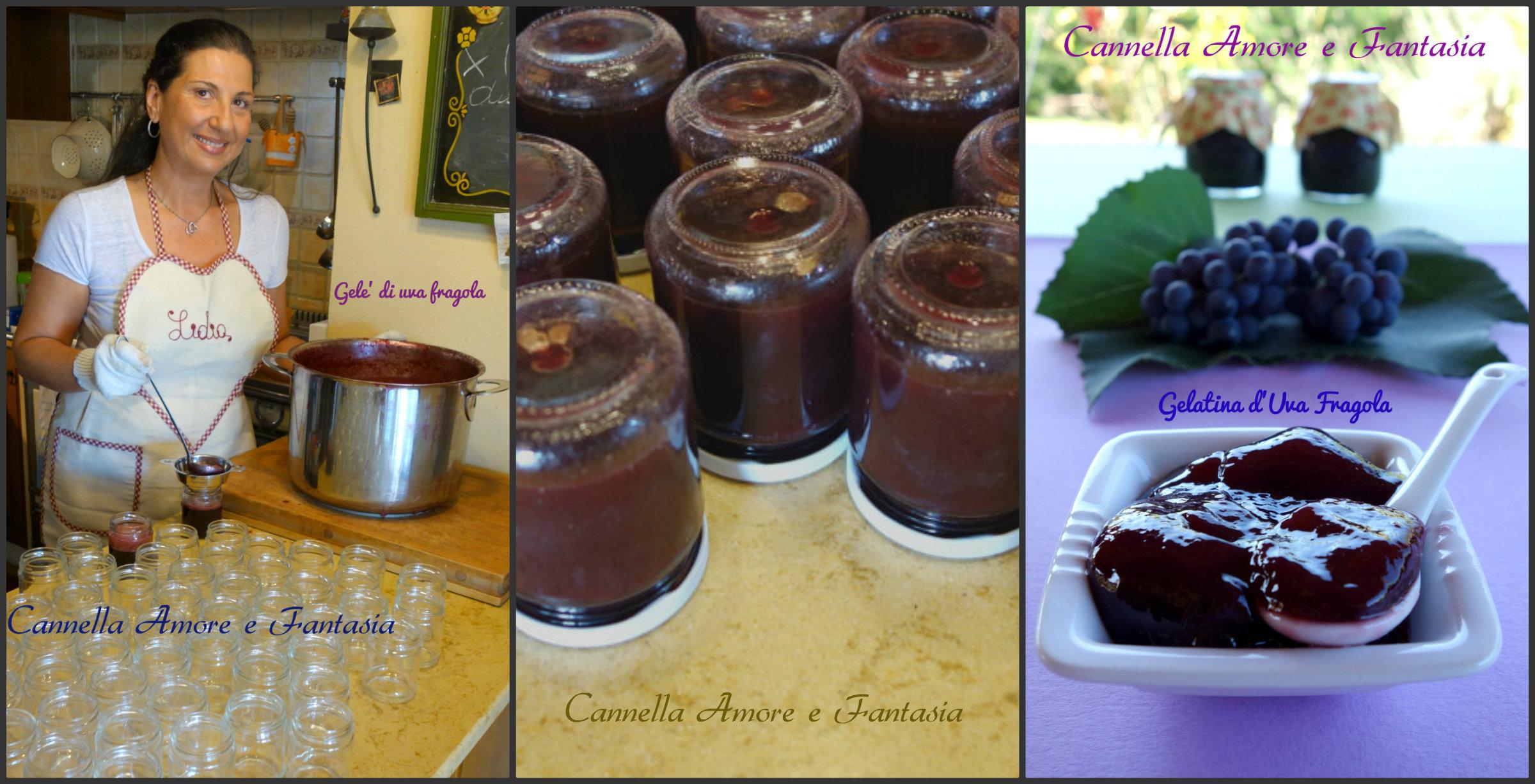 Gelatina d'uva fragola Collage finito 2