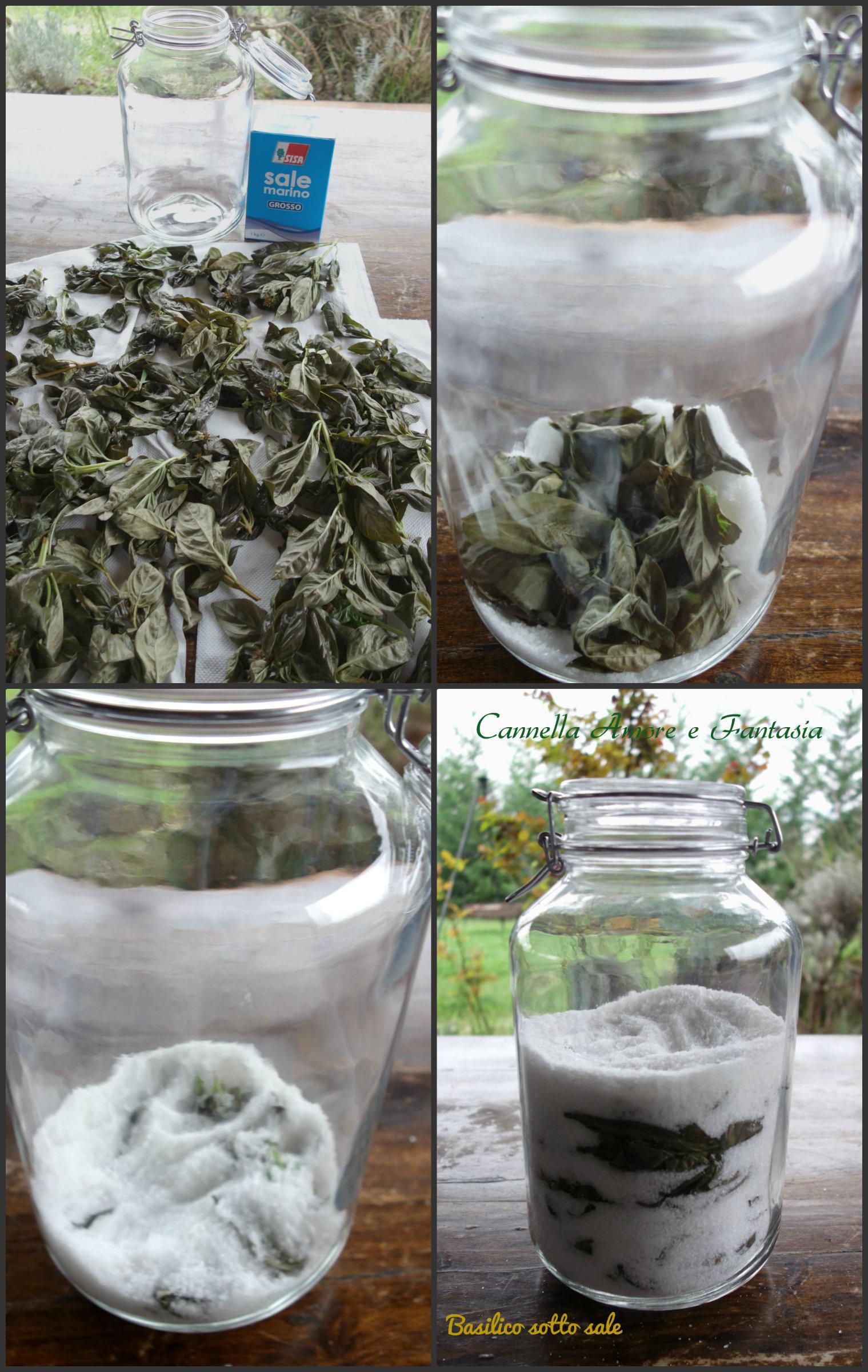 Come conservare il basilico fresco per l'inverno collage finito