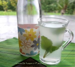 Liquore di anice e lo Zammù Palermitano