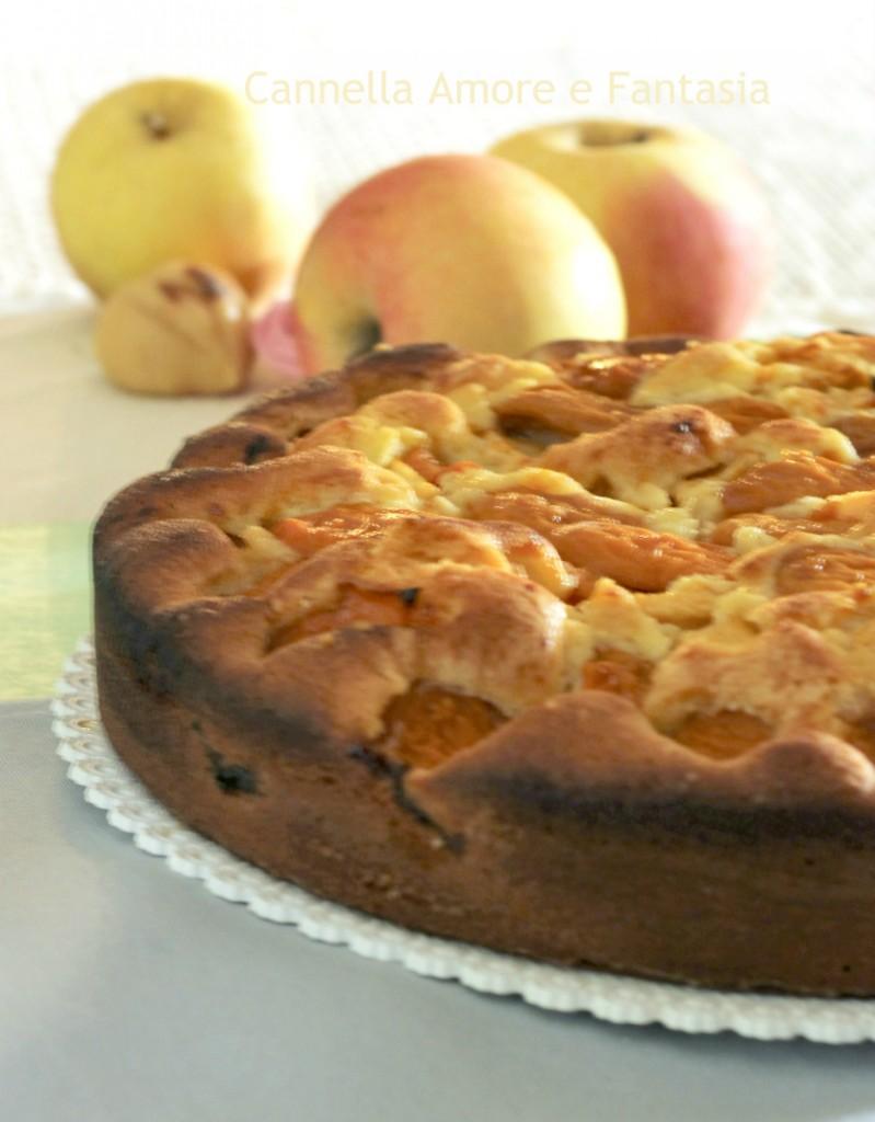Torta di mele e albicocche 2