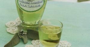 Liquore digestivo alla salvia FB