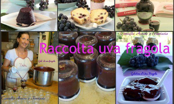 Raccolta di ricette uva fragola – ricette facili alla portata di tutti