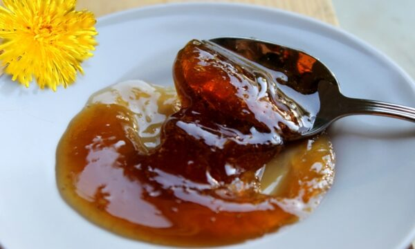 miele vegano da fiori di tarassaco
