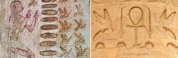 api-egiziAntichi reperti testimoniano l'esistenza del rapporto uomo-ape fin dall'antichità (foto Kenneth J. Stein)