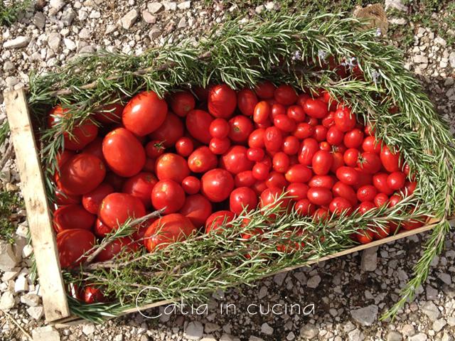 pomodori di Ripalta