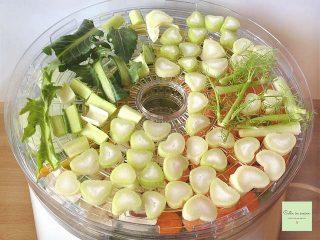 dado granulare vegetale finocchio