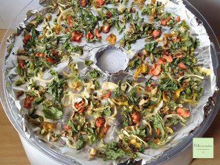 Verdure essiccate (secondo step)