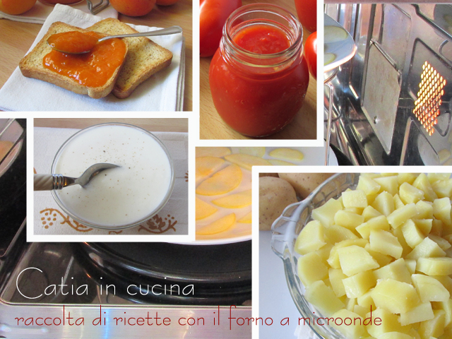 Le mie ricette con il forno a microonde catia in cucina for Microonde ricette