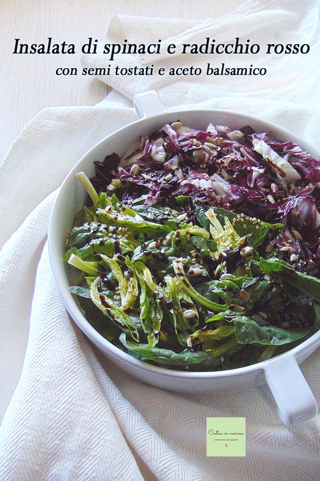 insalata di spinaci e radicchio rosso con semi e balsamico