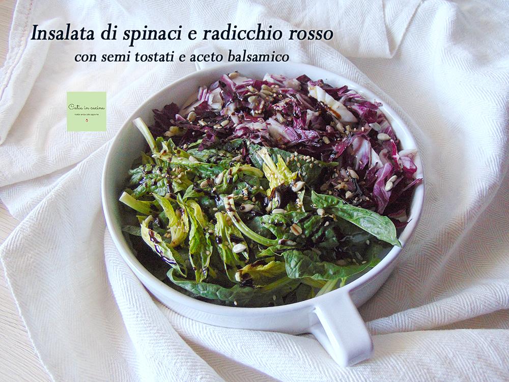 insalata di spinaci e radicchio rosso con semi tostati e balsamico