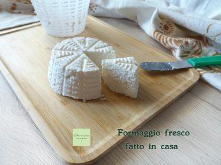 formaggio fresco fatto in casa anteprima