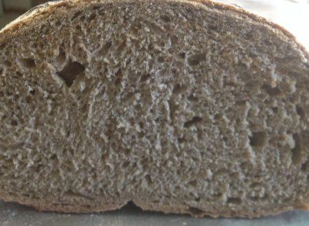 Ricetta regalata dall'Amico Marco Giacomella: Pane di Castellaneta – lievitazione naturale-