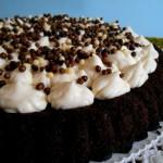 crostata morbida al cacao con chantilly alla vaniglia 1