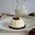 semifreddo di ricotta e yogurt al cioccolato