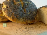 pane ai semi di papavero fb