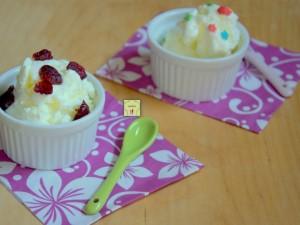 gelato allo yogurt con 2 ingredienti