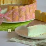 torta fredda charlotte menta e cioccolato