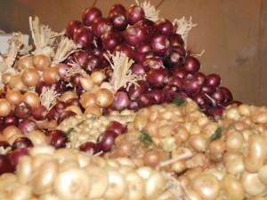 Cipolla di Cannara - per la foto si ringrazia