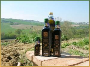 Olio extravergine d'oliva Cartoceto D.O.P. - per la foto si ringrazia