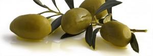 Olio extravergine d'oliva Colline di Romagna