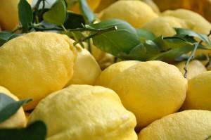 Limone Costa d'Amalfi I.G.P. - per la foto si ringrazia
