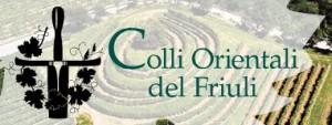 Colli Orientali del Friuli Picolit D.O.C.G. - per la foto si ringrazia