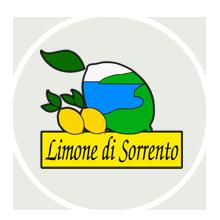 Limone di Sorrento I.G.P. - per la foto si ringrazia