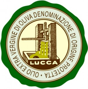 Olio extravergine d'olia Lucca D.O.P. - per la foto si ringrazia