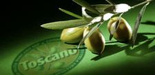 Olio extravergine di oliva Toscano I.G.P. - per la foto si ringrazia