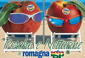 Pesca e nettarina di Romagna I.G.P. - per la foto si ringrazia