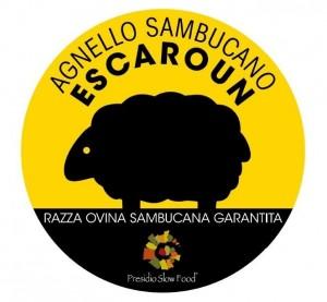 Agnello Sambucano P.A.T. - per la foto si ringrazia