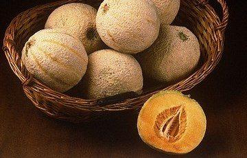 Melone di Isola Sant'Antonio – P.A.T.